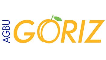 Webinaire Goriz : Trois dimensions du Leadership expliquées aux Jeunes Professionnels Arméniens